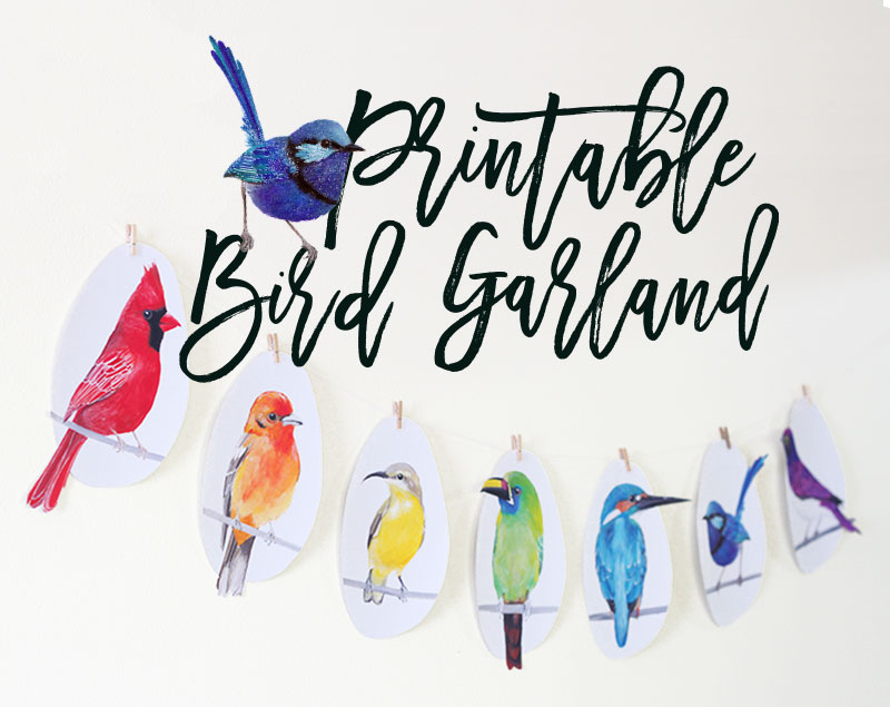 Make a Rainbow Bird Garland with this DIY Printable Bird Garland Kit